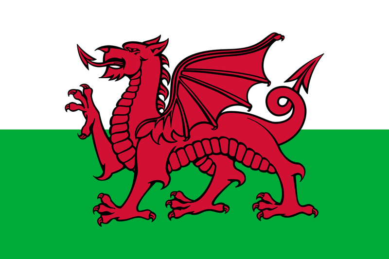 File:Flag of Wales svg.png