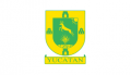 Flag of Yucatan svg.png